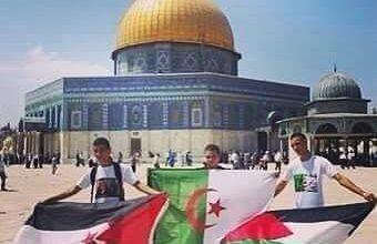 Photo of فلسطين والصحراء الغربية الحق مقابل التطبيع …